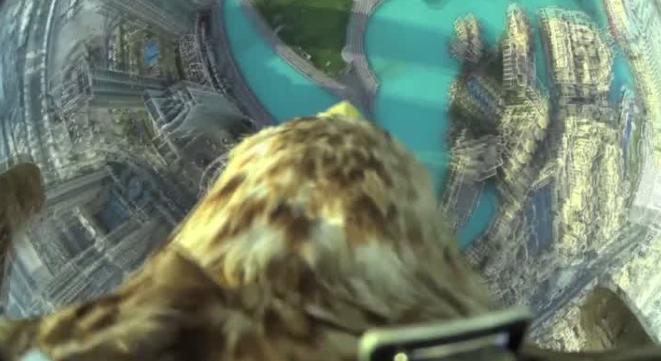 VIDEO: UN ÁGUILA GRABA SU VUELO DESDE EL EDIFICIO MÁS ALTO DEL MUNDO