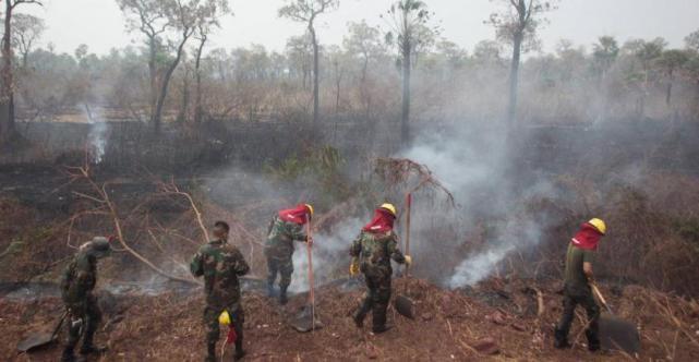LLUVIAS AYUDAN A COMBATIR INCENDIOS FORESTALES EN BOLIVIA