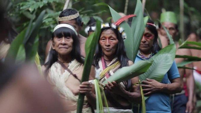 EN BRASIL, EL 51% DE LAS TRIBUS INDÍGENAS DEL AMAZONAS ESTÁN AFECTADAS POR EL COVID-19